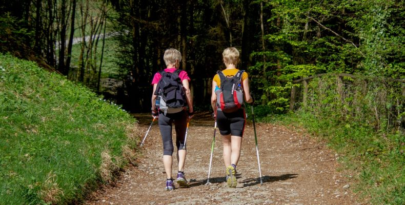 nordic walking canossa trail